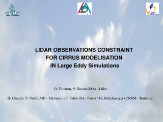 LIDAR OBSERVATIONS CONSTRAINT  FOR CIRRUS MODELISATION  IN Large Eddy Simulations