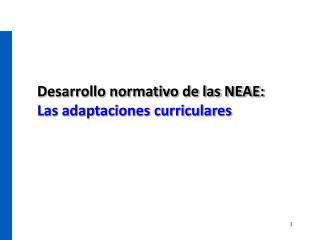 Desarrollo normativo de las NEAE:  Las adaptaciones curriculares