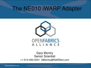 The NE010 iWARP Adapter