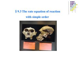 §9. 3 The rate equation of reaction  with simple order