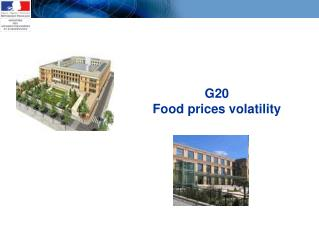 G20 Food prices volatility