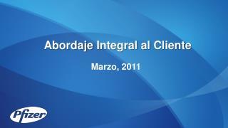 Abordaje  Integral al  Cliente