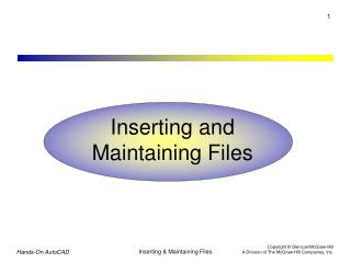 Inserting and  Maintaining Files