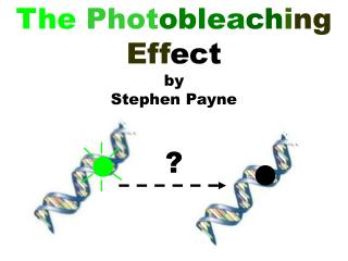 The Phot oblea ch i ng Eff ect by Stephen Payne ?