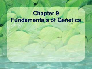 Chapter 9 Fundamentals of Genetics