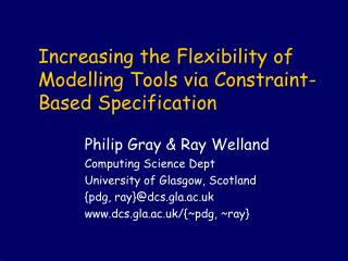 Increasing the Flexibility of Modelling Tools via Constraint-Based Specification