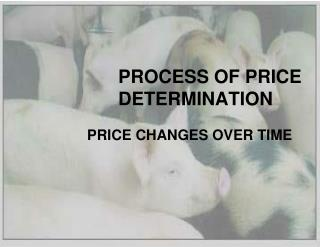 PROCESS OF PRICE DETERMINATION