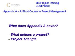 MS Project Training        COMP1900  Appendix A   A Short Course in Project Management