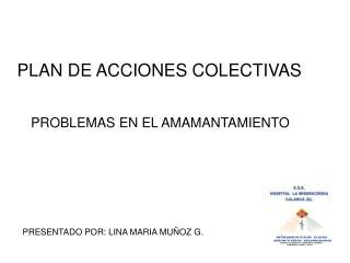 PLAN DE ACCIONES COLECTIVAS