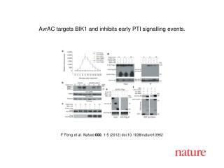 F Feng  et al .  Nature 000 ,  1 - 5  (2012) doi:10.1038/nature10962