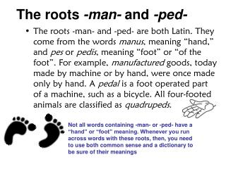 The roots  -man-  and  -ped-