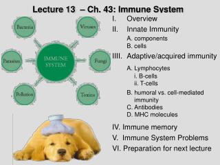 Lecture 13  � Ch. 43: Immune System