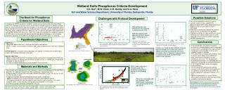 Wetland Soils Phosphorus Criteria Development