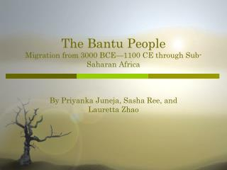 The Bantu People Migration from 3000 BCE—1100 CE through Sub-Saharan Africa