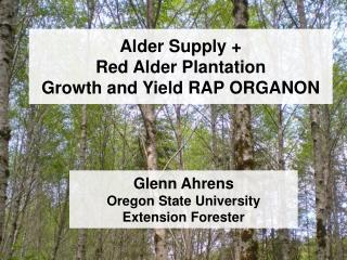 Alder Supply + Red Alder Plantation  Growth and Yield RAP ORGANON