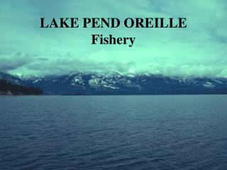 LAKE PEND OREILLE Fishery