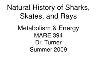 Natural History of Sharks, Skates, and Rays Metabolism & Energy MARE 394 Dr. Turner Summer 2009