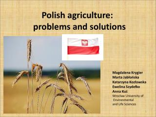 Polish agriculture : problems  and  solutions