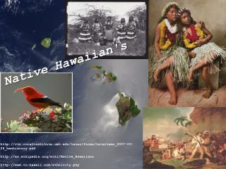 Native Hawaiian's