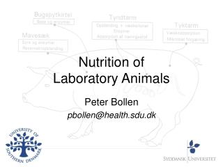 Nutrition of  Laboratory Animals