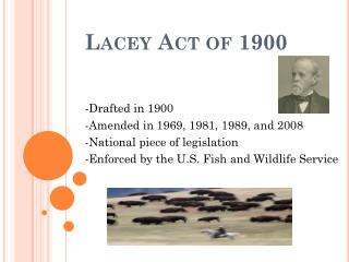 Lacey Act of 1900