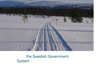 the Swedish Government System