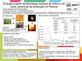 Energia a partir da biomassa residual do milho e da cana: potencial de produção no Paraná