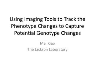 Using Imaging Tools to Track the Phenotype Changes to Capture Potential Genotype Changes