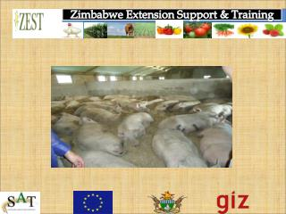 Zimbabwe Extension Support & Training