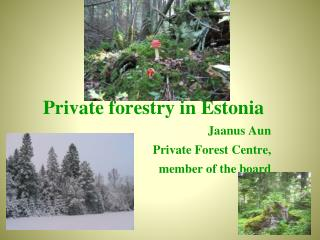 Private  f orestry  in Estonia Jaanus Aun Private Forest Centre , member of the board