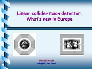 Linear collider muon detector:         What's new in Europe