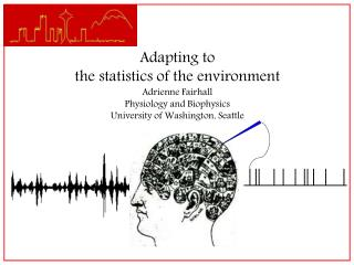 Adapting to the statistics of the environment Adrienne Fairhall Physiology and Biophysics