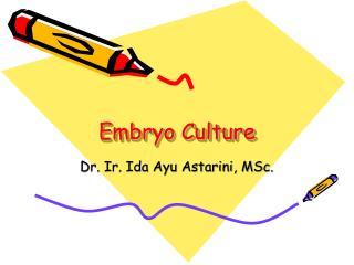 Embryo Culture