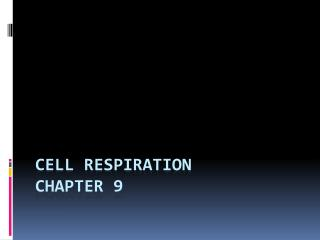 Cell Respiration  Chapter 9