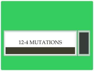 12-4 Mutations