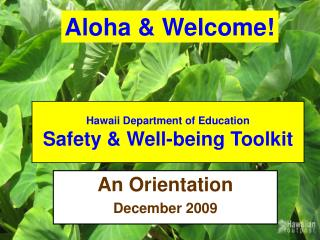 Hawaii Department of Education Safety  Well-being Toolkit