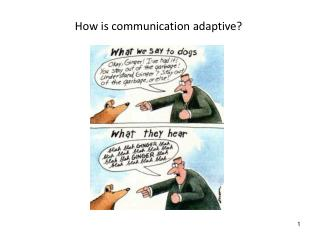 How is communication adaptive?