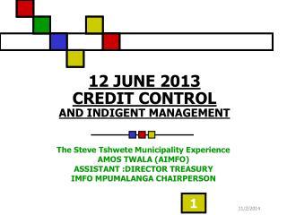12 JUNE 2013 CREDIT CONTROL AND INDIGENT MANAGEMENT