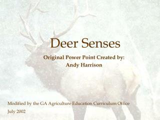 Deer Senses
