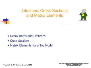 Lifetimes, Cross-Sections and Matrix Elements
