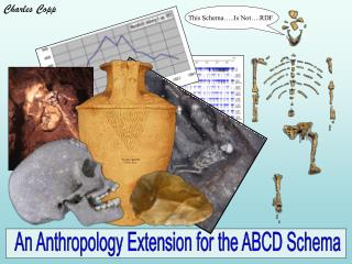 An Anthropology Extension for the ABCD Schema