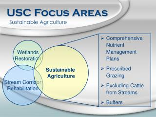 USC Focus Areas