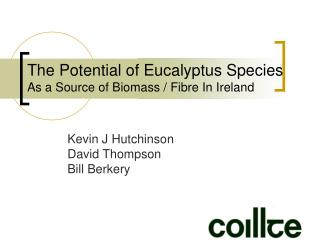 The Potential of Eucalyptus Species As a Source of Biomass
