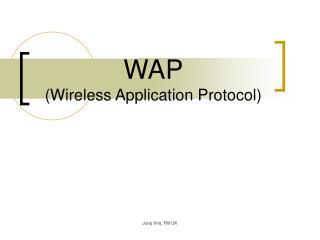 WAP ( Wireless Application Protocol )