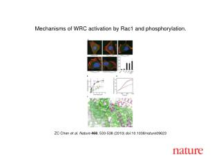 ZC Chen  et al. Nature 468 , 533-538 (2010) doi:10.1038/nature09623