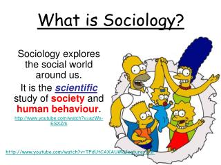 Sociology explores the social world around us.
