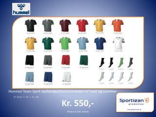 Hummel Team  Spirit  Spilletrøje/shorts/strømpe m/ navn og nummer