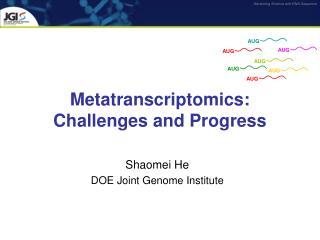 Metatranscriptomics: Challenges and Progress