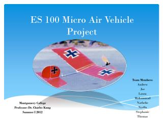 ES 100 Micro Air Vehicle Project