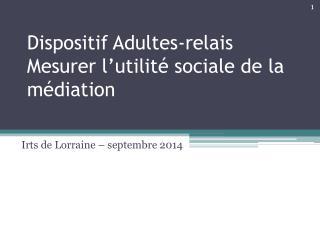 Dispositif Adultes-relais Mesurer l'utilité sociale de la médiation